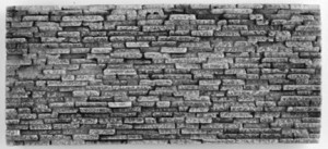 Flagstone Wall Mold 300x137