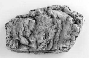 Rock Mold 4 300x195