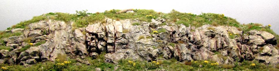 Rock Molds 1 2